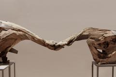 """Splot"", drewno, metal, 110 x 100 x 240 cm, 2013r."