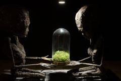 Biosfera, 60x26x96cm, 2018 r.