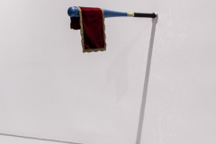 Cesarzowa rozpalona z pożądania, aluminium, makatka, 2018